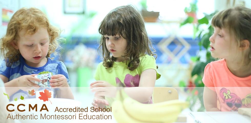 Guelph Montessori Schools