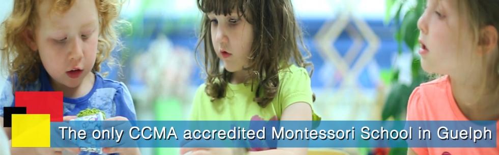 Best Montessori Schools Guelph