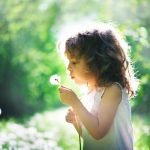 Summer tips from Montessori School of Wellington in Guelph