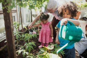 Children helping water plants in an garden